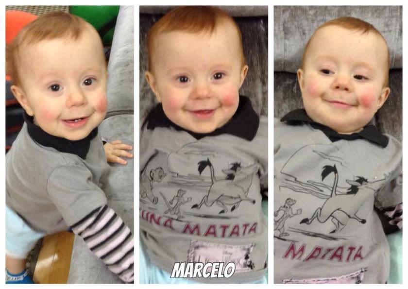 Marcelo 16112014